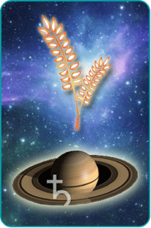 Illustration of Virgo's harvested wheat with the planet Saturn