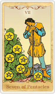 The 7 of Pentacles Tarot Card based on Rider-Waite