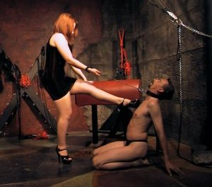 Mistress Scarlet puts a slave in his place!